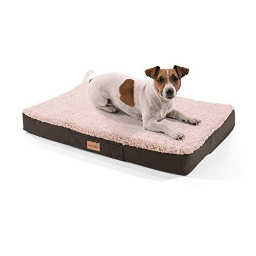 Brunolie Balu Hundebett in Dunkelbraun, waschbar, orthopädisch und rutschfest, kuscheliges Hundekissen mit atmungsaktivem Memory-Schaum, Größe S (72 x 50 x 8 cm) Beige